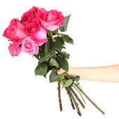Beautiful pink roses in hand isolated on white — Stok fotoğraf
