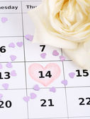 Notes on the calendar (valentines day) and rose, close-up — Stock Photo