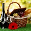 Picnic basket and bottle of wine on grass on bright background — Stock Photo #19729165