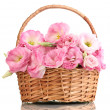 Stock Photo: Bouquet of eustomflowers in basket, isolated on white