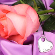 Beautiful pink rose with heart pendant — Stock Photo #19732963