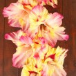 Branch of yellow-pink gladiolus on wooden background close-up — Stock Photo