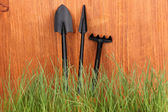 Yeşil çim ve bahçe aletleri ahşap zemin üzerinde — Stok fotoğraf