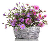 Beautiful bouquet of purple flowers in basket isolated on white — Stock Photo
