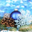 Christmas decoration on blue background — Stock Photo #19844981