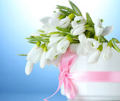 Beautiful bouquet of snowdrops in vase with bow on blue background — Stock Photo