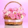 Stock Photo: Bouquet of eustomflowers in basket, on pink background