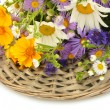 Beautiful bouquet of bright wildflowers, isolated on white — Stock Photo #20017409