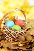柳条篮在树叶中隐藏的复活节彩蛋 — 图库照片
