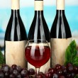 Composition of wine bottles, glass and  grape, on bright background — Stockfoto