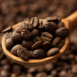 Coffee beans in wooden spoon, close up — Stock Photo