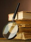 Büyüteç ve masa üzerine kitaplar — Stok fotoğraf