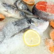 Fresh seafood on ice — Stock Photo