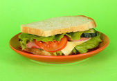 Sandwich on plate on green background — Stock Photo
