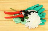 Cesoie con fiore su fondo in legno — Foto Stock