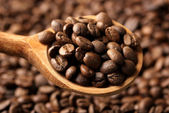 Chicchi di caffè in un cucchiaio di legno, da vicino — Foto Stock