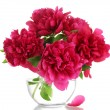 Beautiful pink peonies in glass vase isolated on white — Stock Photo #20244577