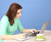 Beautiful young woman working on laptop on blue background — Foto de Stock