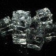 Stock Photo: Ice cubes isolated on black
