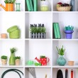 Beautiful white shelves with different gardening related objects — Stock Photo #20662615