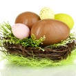 Composition of Easter and chocolate eggs in nest isolated on white — Stock Photo