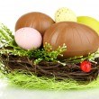 Stock Photo: Composition of Easter and chocolate eggs in nest isolated on white