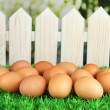 Many eggs on grass on bright background — Stock Photo