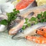 Fresh seafood on ice — Stock Photo #20663611