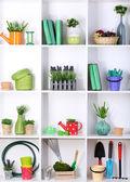 Hermoso blanco estantes con diferentes objetos relacionados con jardinería — Foto de Stock