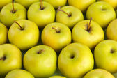 Juicy apples, close up — Stock Photo