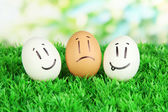 Eggs with funny faces on grass on bright background — Stock Photo