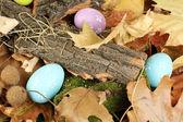 Uova di Pasqua nascoste in foglie — Foto Stock