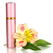 Women's perfume in beautiful bottle with flower isolated on white — Stock Photo