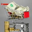 Money in cart on grey background — Stok fotoğraf