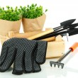 Stock Photo: Garden tools isolated on white