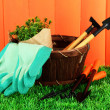 Stock Photo: Garden tools on grass in yard