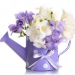 Beautiful bouquet of freesias in watering can, isolated on white — Stock Photo #21182321
