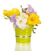 Freesias 桶,在白色上隔绝的美丽花束 — 图库照片