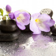 Spa stones and purple flower, isolated on white — Stock Photo #21215629