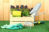 Garden tools on grass in yard — Stok fotoğraf