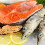 Fresh seafood on ice — Stock Photo #21284095
