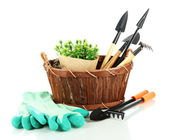 Garden tools isolated on white — Stok fotoğraf