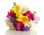 Beautiful bouquet of freesias, isolated on white — Photo