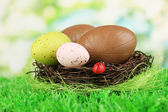 Composition of Easter and chocolate eggs in nest on grass on natural background — Stock Photo