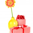 Beautiful Gerber flower with gifts isolated on white — Stock Photo