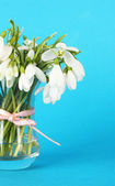 Bouquet of snowdrop flowers in glass vase, on color background — Stock Photo