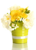 Beautiful bouquet of freesias in pail, isolated on white — Stock Photo