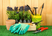 Garden tools on grass in yard — ストック写真