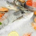 Fresh seafood on ice — Stock Photo #21769311