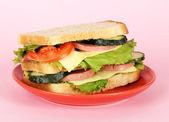 Sandwich on plate on pink background — Stock Photo